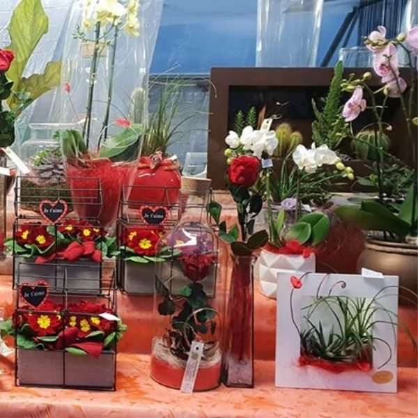 FLEURISTE CHANTAL ROZAND-Fleuriste horticulteur-vitrine