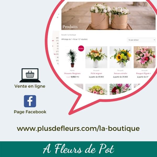 Coeur du commerce_vignette vente en ligne_A Fleur de pot